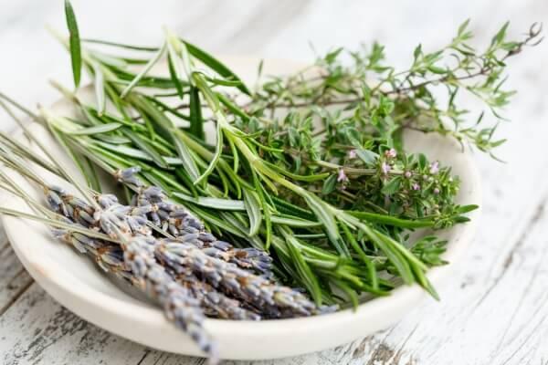 Přednáška - bylinky a koření nejen pro gastronomii